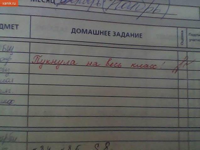 Замечание в дневнике. Пукнула на весь класс