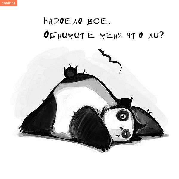 Панда. Надоело все. Обнимите меня что ли?