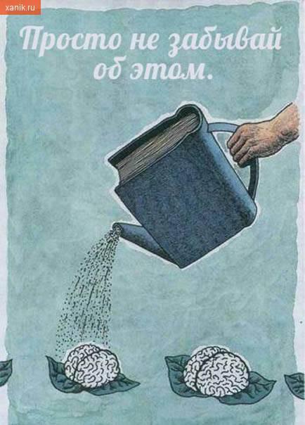 Просто не забывай об этом. Книги - пища для мозга