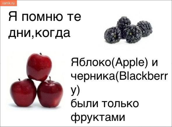 Я помню те дни, когда яблоко и черника были только фруктами